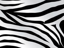 Disegno della tigre nel nero Fotografia Stock