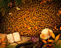 Disegno di autunno - diario caro Fotografie Stock