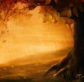 Disegno di autunno - foresta nella caduta Immagini Stock Libere da Diritti