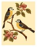 Disegno di bello modello luminoso di fiori e degli uccelli sul fondo dell'avorio Fotografie Stock