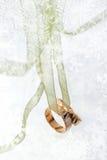 Disegno di cerimonia nuziale di inverno Fotografie Stock Libere da Diritti