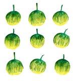 Disegno di colore di acqua delle melanzane del bambino fotografia stock