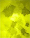 Disegno di colore dell'onda chiara Fotografie Stock Libere da Diritti