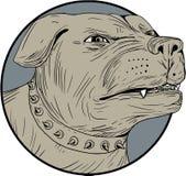 Disegno di Dog Head Angry della guardia di Rottweiler Immagine Stock