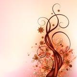 Disegno di flourish del Brown Fotografia Stock