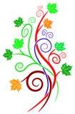 Disegno di pianta di turbinio Immagini Stock Libere da Diritti
