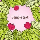 Disegno di scheda del fiore di Sprimg illustrazione di stock