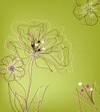 Disegno di scheda del regalo Immagine Stock