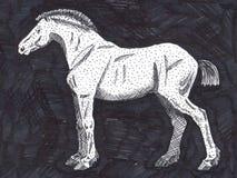 Disegno dilettante di un cavallo royalty illustrazione gratis