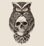 Disegno elaborato del cranio della tenuta del gufo Immagini Stock Libere da Diritti