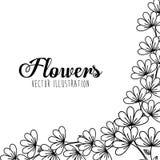 Disegno floreale in bianco e nero Fotografie Stock