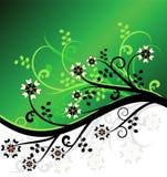 Disegno floreale di vettore verde Immagini Stock Libere da Diritti