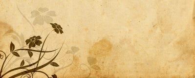 Disegno floreale e vecchia pergamena Fotografie Stock Libere da Diritti