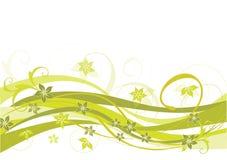 Disegno floreale e verde oliva Immagine Stock