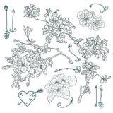 Disegno floreale, illustrazione di vettore Immagine Stock