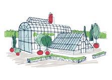 Disegno a mano libera dell'esterno del giardino botanico tropicale circondato dai cespugli e dagli alberi che crescono in vasi Sc royalty illustrazione gratis