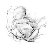 Disegno a matita del bambino addormentato Immagini Stock
