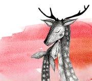 Disegno a matita di una coppia i cervi su un fondo dell'acquerello Illustrazione isolata Immagine Stock Libera da Diritti