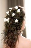 Disegno nuziale dei capelli Fotografia Stock