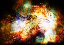 Disegno ornamentale del corvo con le piume nello spazio cosmico immagini stock