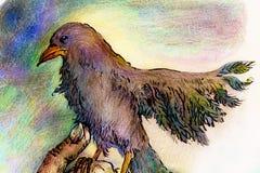 Disegno ornamentale variopinto dettagliato dell'uccello del parco di fantasia Fotografia Stock Libera da Diritti