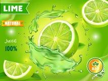 Disegno pubblicitario del manifesto del succo di cedro Tonico del cocktail o dell'agrume di mojito di vettore royalty illustrazione gratis