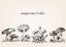 Disegno sveglio dei funghi royalty illustrazione gratis