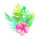 Disegno tradizionale del mazzo tropicale dell'acquerello Fiore esotico dell'acquerello della pittura isolato su fondo bianco Fotografie Stock Libere da Diritti