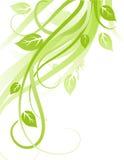 Disegno verde Immagini Stock