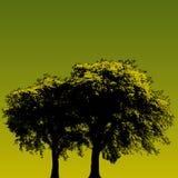Disegno verde dell'albero Fotografia Stock Libera da Diritti