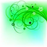 Disegno verde dell'arricciatura Immagine Stock