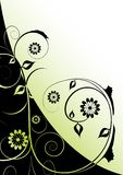 Disegno verde e nero del flourishe Fotografia Stock Libera da Diritti
