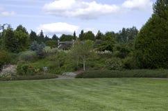 Diseño del patio trasero del jardín del césped Imágenes de archivo libres de regalías