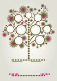 Diseño del árbol de familia del vector con los marcos Foto de archivo