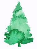 Diseño del árbol de la acuarela Imagen de archivo libre de regalías