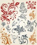 Diseño floral del ornamento de la decoración Imagen de archivo libre de regalías