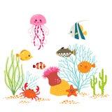 Diseño subacuático del mundo Fotos de archivo libres de regalías
