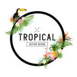 Diseño tropical de la frontera Imágenes de archivo libres de regalías