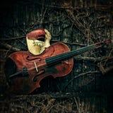 Disfarce - fantasma da máscara de Opera com violino Imagem de Stock