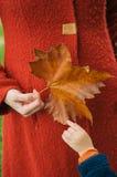 Disfrutar de otoño Imagen de archivo libre de regalías