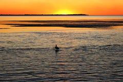 Disfrutar de tiempo de la puesta del sol así como pelícano en Australia Fotos de archivo
