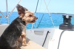 Disfrutar de vida del barco imagen de archivo libre de regalías