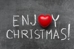 Disfrute de la Navidad Imagen de archivo libre de regalías