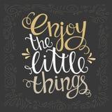 Disfrute de las pequeñas cosas para el cartel dibujado mano de la letra Fotografía de archivo
