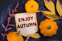 Disfrute del otoño foto de archivo libre de regalías