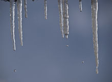 Disgelo Immagine Stock