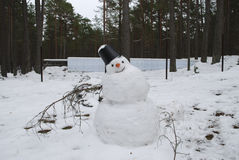 disgelo Colate del pupazzo di neve Immagini Stock Libere da Diritti