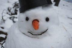 disgelo Colate del pupazzo di neve Fotografia Stock Libera da Diritti