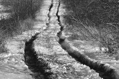 Disgelo della primavera Immagini Stock Libere da Diritti