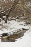 disgelo nel fiume Fotografie Stock Libere da Diritti